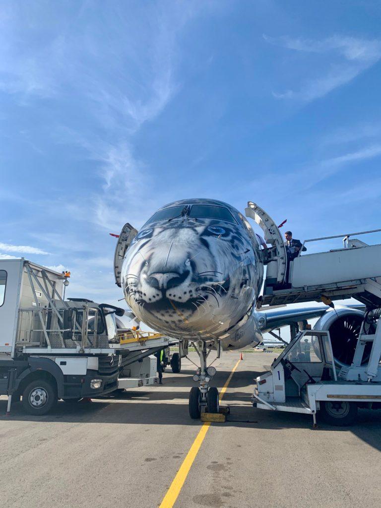 Air Astana Flugzeug mit Schneeleoparden-Schnauze