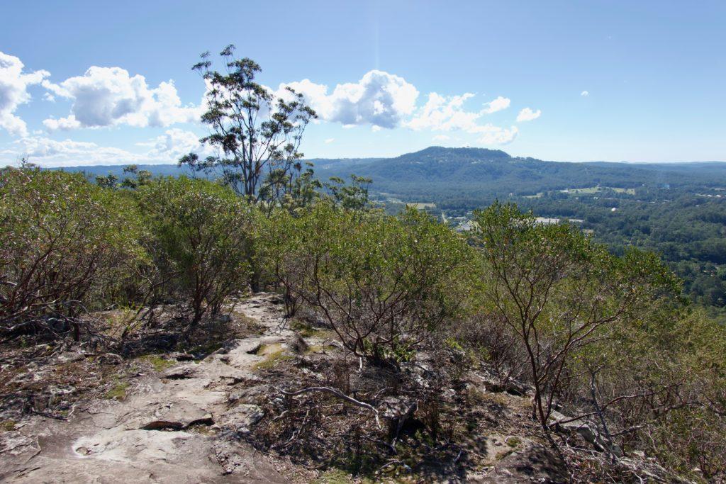 Gipfelweg Mount Coochin