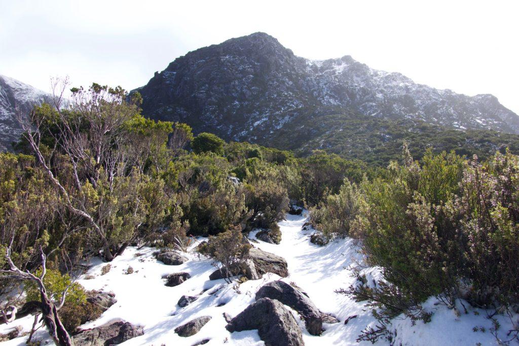 Aufstieg auf den Mount Murchinson
