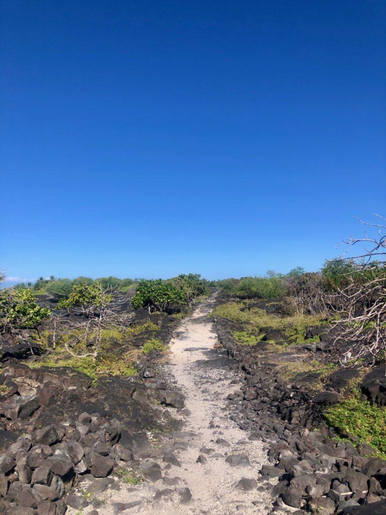 1871-Trail