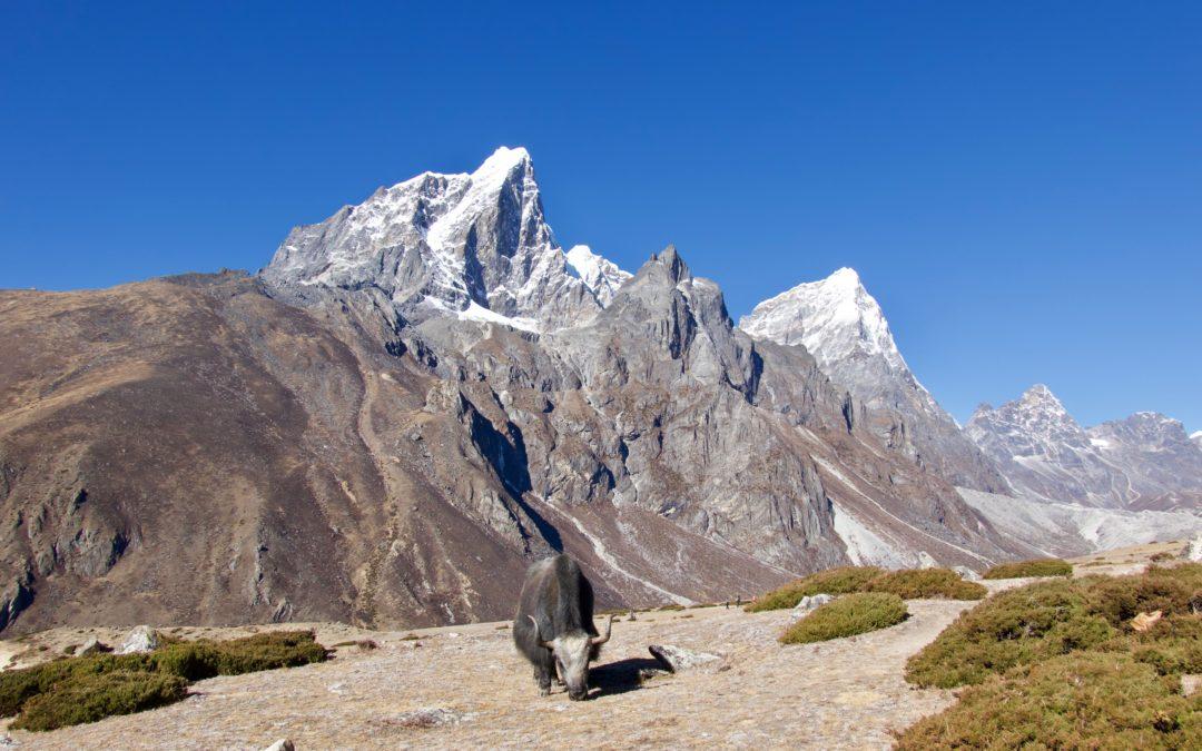 Khumbu-Tal, Nepal