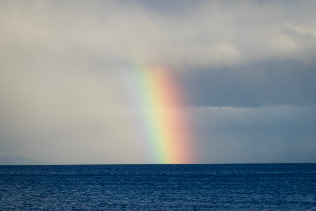 Regenbogen in Punta Arenas